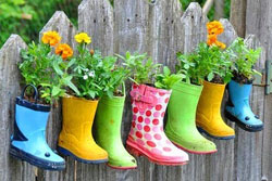 rubberboot planter